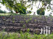 Land For Sale | Land & Plots For Sale for sale in Dar es Salaam, Kinondoni