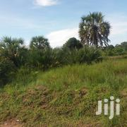 Plots For Sale In Kigamboni Guide Center | Land & Plots For Sale for sale in Dar es Salaam, Temeke