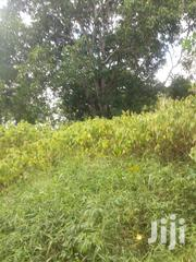 Shamba Linauzwa | Land & Plots For Sale for sale in Pwani, Bagamoyo