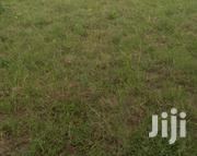 Plot For Sale At Goba Njia Nne | Land & Plots For Sale for sale in Dar es Salaam, Kinondoni